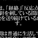ほったらかしダイエット「福辻式」DVD #情報商材 #freereport #followme