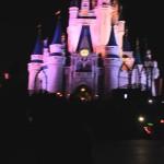 【WDW】パレード前で盛り上がすワゴン販売キャスト&ゲスト@Magic Kingdom, Walt Disney World(マジックキングダム、ウォルトディズニーワールド) #ディズニー #followme