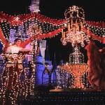 【WDW】エレクトリカルパレード「シンデレラ」フロート@Magic Kingdom, Walt Disney World(マジックキングダム、ウォルトディズニーワールド) #ディズニー #followme