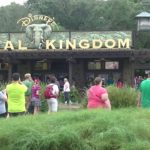 Disney Animal Kingdom @ Walt Disney World part.2 (2015.11.10) #ディズニー #Disney #followme