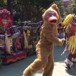 TDL新アトモス「ジャングリズム」 #ディズニー #Disney #followme
