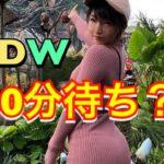 【meruのアメリカ日記】WDW最新!アトラクション!乗って来たよ! #ディズニー #Disney #followme