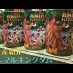 (WDW) ディズニーワールド: お土産紹介〜アニマルキングダム編その1 #ディズニー #Disney #followme