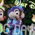 【フロリダ】5泊7日ディズニーワールドVlog【WDW】2018.10 Day2 #ディズニー #Disney #followme