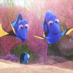 『ファインディング・ドリー』かわいすぎるベビー・ドリー初登場シーン #ディズニー #Disney #followme