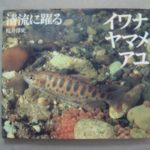 A528★イワナ・ヤマメ・アユ 清流に躍る 桜井淳史 動物写真集