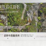 カレンダー 2016 WILD LIFE 北海道野生動物写真