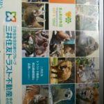 新品・未開封 東山動物園カレンダー イケメンゴリラのシャバーニ