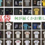 ホリスター【新品即納:XL】メンズTシャツ お楽しみ福袋 残1着