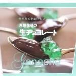 作りたてがおいしい斉藤美穂の生チョコレート 斉藤 美穂