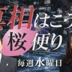 【桜便り】田母神・舛添問題の共通性について / 沖縄左翼の実態と押し紙問題[桜H28/5/18] #トレンド #followme