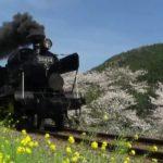 HD画質 JR九州社歌「浪漫鉄道」映像集【2011年版】 #トレンド #followme