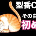 【初めて語る!!】型番CATって何??その由来は?? #トレンド #followme